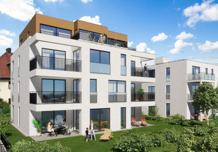Neubauprojekt Weingarten