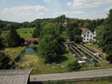 Kapitalanlage in RV-Stadtrandlage – Weitläufiges Grundstücksareal mit 2 Liegenschaften, 88212 Ravensburg, Halle/Lager/Produktion